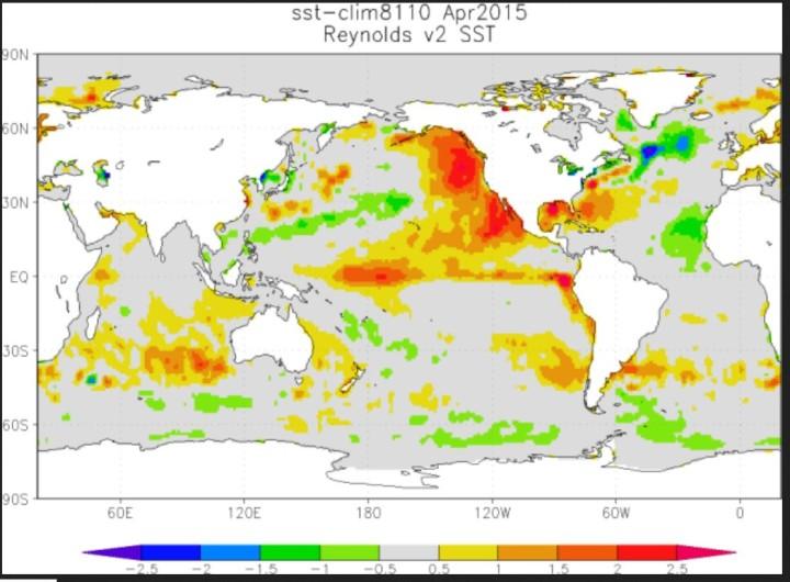 """Der warme """"Blop"""" im östlichen Nordpazifik (rote Farben) und der eher kühle Nordatlantik (blaeu und grüne Farben im April 2015"""