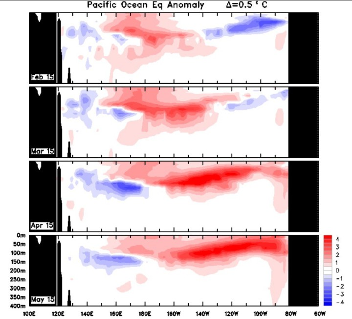 Die untere Bildsequenz zeigt in Rot die überdurchschnittliche watmen Wassermassen im äquatorialen Pazifik bis 11.5.2015