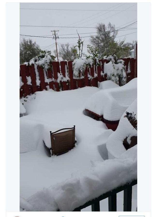Fast ein halber Meter Schnee in Nebraska/USA am 11. Mai 2015