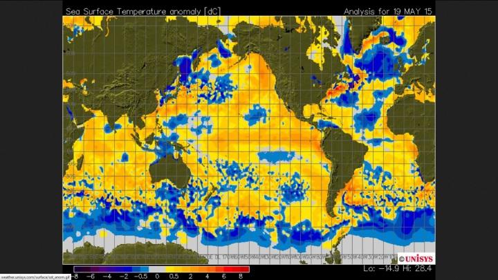 SST-Abweichungen am 19.5.2015 mit kleinen kühleren (blauen) Stellen im östlichen Nordpazifik sowie verbreiteten kühlen (blauen) SSR-Anomalien im gesamten Nordatlantik