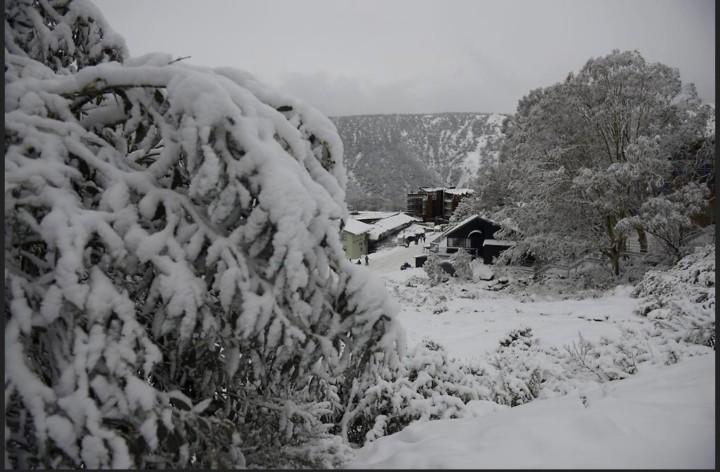 Ungewohntes Bild: Eis und Schnee in Australien. (Foto: dpa)