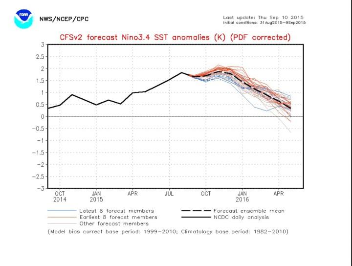 NOAA(CFSv2-Prognose für das maßgebliche Niño-Gebiet 3.4 vom 10.9.2015 für die kommenden Monate. Die schwarze dicke Linie zeigt einen gemessenen Höhepunkt im August 2015. Vor allem die aktuellen Prognosen der dünnen blauen Linien liegen deutlich darunter. Ist damit der Höhepunkt des aktuellen El Niño-Ereignisses bereits erreicht? Quelle: