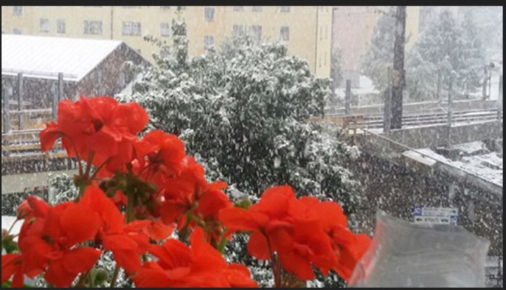 WetterTicker - Wetter live verfolgen Senden Sie uns Ihre Bilder/Videos 15:49 Uhr 23. September Wetterbericht: Morgen wieder freundlicher Das Wetter hellt sich ab morgen wieder auf. Verbreitet bleibt es fast den ganzen Tag über trocken und die Temperaturen steigen etwas an. Und zwei Gebiete bekommen voraussichtlich den meisten Sonnenschein ab... Mehr Details im aktuellen Wetterbericht 14:51 Uhr 23. September Alpen: Auf 1000 Meter Höhe weiß! Überraschend tief hat es im österreichischen Bad Gastein herunter geschneit: In dem Wintersportort am Alpenhauptkamm ist es heute auf nur 1000 Meter Höhe weiß geworden. Quelle: wie vo