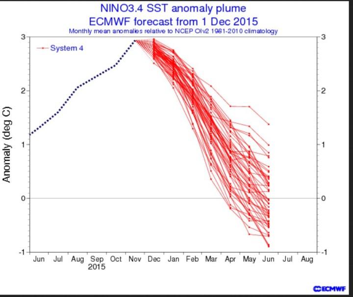 ECMWF-ENSO-Prognose vom 1. Dezember 2015 für die Abweichungen der Meeresoberflächentemperatur (SSTA) im maßgeblichen Niño-Gebiet 3.4. Nach dem El Niño-Höhepunkt im November 2015 erreichen die Prognosen ab Sommer La Niña-Werte ab -0,5 und kälter. Quelle: