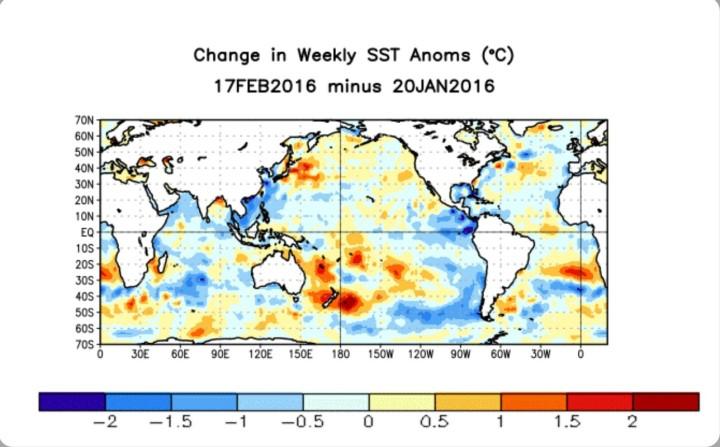 Die Abweichungen der globalen Meeresoberflächentemperaturen (SSTA) von Mitte Januar bis Mitte Februar. Vor allem im äquatorialen Ostpazifik ist eine deutlich Abkühlung (blaue Farben) zu erkennen.