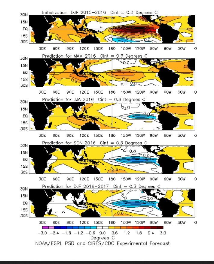 Die NOAA-Prognose-Plots von März 2016 zeigen die mögliche ENSO-Entwicklung vom global wärmenden El Niño im äquatorialen Pazifik zur global kühlenden La Niña. Bereits ab NH-Sommer zeigen die blauen Farben einsetztende La Niña-Bedingungen im äquatorialen Pazifik an. Quelle: