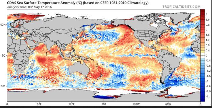 Der CDAS-Index zeigt die täglichen globalen Abweichungen der SST. Mitte Mai 2016 schlängelt sich La Niña (blaue Farben) bereits gut erkennbar über weite Strecken des äquatorialen Pazifiks. Quelle: wie vor