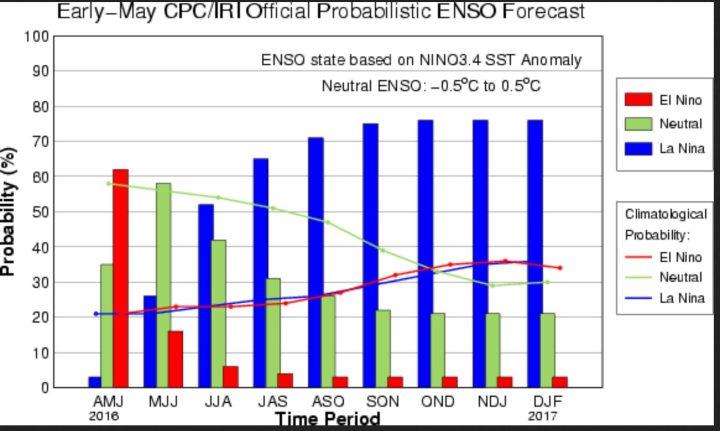 Die Summe der ENSO-Prognosen sieht Anfang Mai 2016 nun rund 75% Wahrscheinlichkeiten für La Nina im zweiten Halbjahr 2016 (blaue Säulen). Quelle: