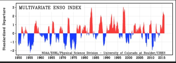 """MEI von 1950 bis April 2016 als positive (rote/El Nino ab ca. +0,5) und negative (blaue/La Nina ab ca. -0,5) ENSO-Phasen. Die Grafik zeigt 2015/16 den insgesamt dritthöchsten Wert nach 1982/1983 und 1997/1998, die MEI-Werte fallen nach einem """"Peak"""" im August/September 2015 nun deutlich ab, ein zweiter """"Peak"""" wie 1998 ist nicht mehr zu erwarten. Quelle: wie vor"""