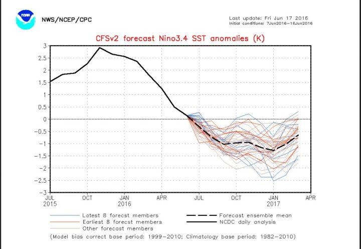 Der Pot zeigt die NOAA-CFSv2- ENSO-Prognose vom 17.6.2016 für die monatlichen SSTA der kommenden Monate. Das Modell scheint wieder mal sehr verwirrt, weil die Streung der aktuellen Prognosen (blaue Linie) z.B- im Januar 2017 von -0,2 K bis -2,5 K reicht. Quelle: