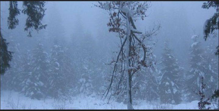 """""""Wiesbaden (wetter.net) 14.07.2016 - Schon an Camping im Schnee gedacht und das mitten im Juli? Wie von wetter.net bereits am Montag angedroht kann dieser Wunsch heute in den Alpenländern Schweiz und Österreich erfüllt werden! Die Schneefallgrenze ist in diesen Regionen über Nacht deutlich abgesackt. Stellenweise tanzen heute Morgen bis auf 1500 m die Schneeflocken. Für Mitte Juli ist so eine tiefe Schneefallgrenze extrem selten. Klar: Es kann mal im Juni oder im späten August bis auf diese Höhen herab schneien, aber im Juli ist das nun wirklich ein eher seltenes Schauspiel. Dieser Sommer hält sich nun nicht nur für den Herbst, sondern sogar für den Winter..."""" Quelle: wie vor"""