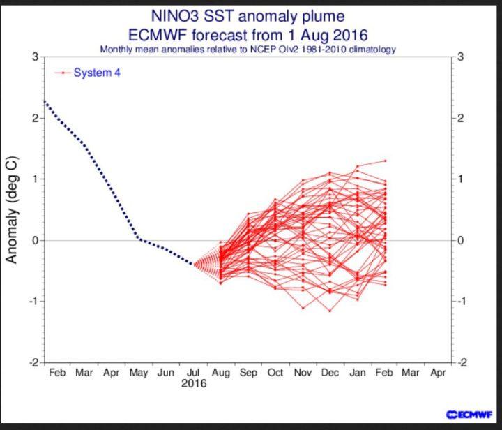 ECMWF ENSO-Prognose vom August 2016 mit nahe Null K Abweichung im Nino-Gebiet 3.4 von September 2016 bis Februar 2017. Quelle: