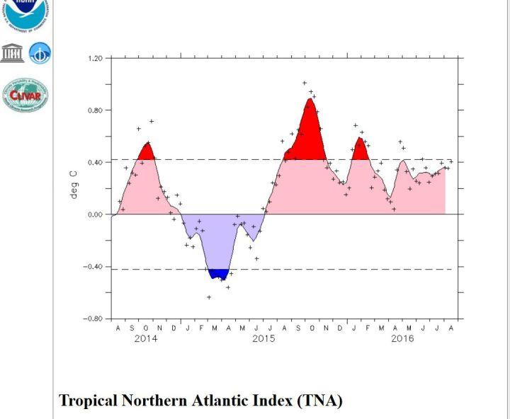 Die Wassertemperaturen im Tropischen Nordatlantik (55°W - 15°W, 5°N - 25°N) liegen seit Juni 2016 im positiven Durchschnitt und bietern keinen besondferen Anreiz zur Bildung Tropischer Zyklone, aus denen Hurrikane entstehen könnten. Quelle: