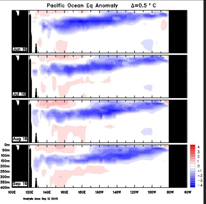 Der Plot zeigt die Entwicklung der Temperaturanomalien unter Wasser im äquatorialen Pazifik von Juni bis 12. September 2016. Die kalten Anomalien beherrschen große Bereiche im mittleren und östlichen äquarotialen Pazifik von 0 bis etwa 200 m Tiefe: La Niña ist da - und bleibt. Quelle: