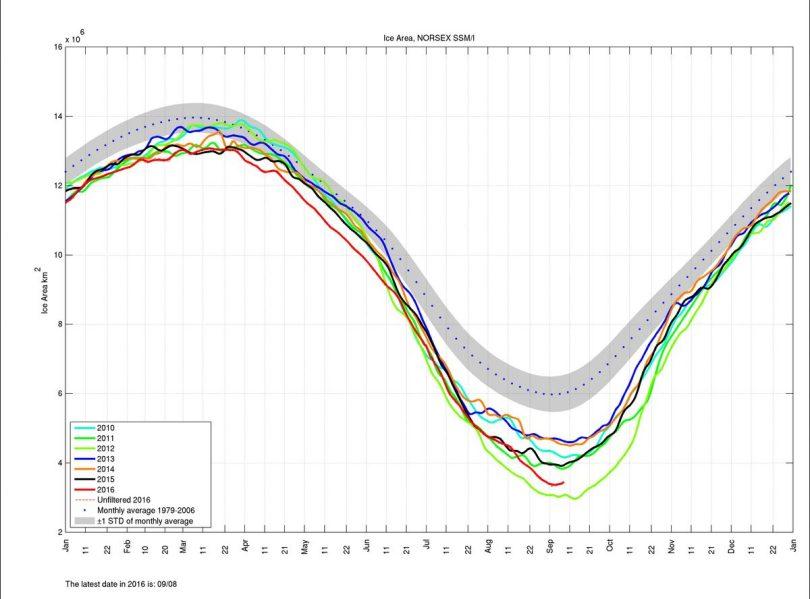 Die Norsex-Grafik der arktischen Meereisfläche (area) vom 8.9.2016 zeigt das Minimum am 7.9. und einen leichten Anstieg zum 8.9.2016. Quelle: