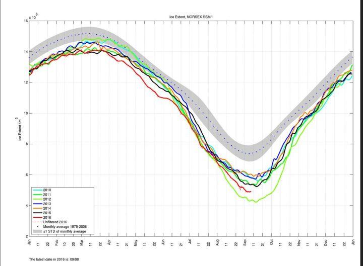 Die Norsex-Grafik der arktischen Meereisflächen (extent) vom 8.9.2016 zeigt das Minimum am 7.9. und einen leichten Anstieg zum 8.9.2016. Quelle: