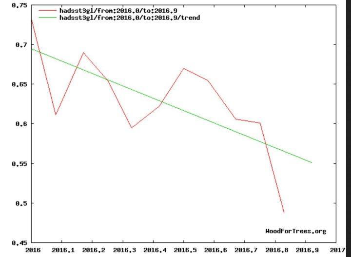 Der Verlauf der globalen SSTA im Jahr 2016 von Januar bis November mit deutlichem negativem Verlauf. Quelle:
